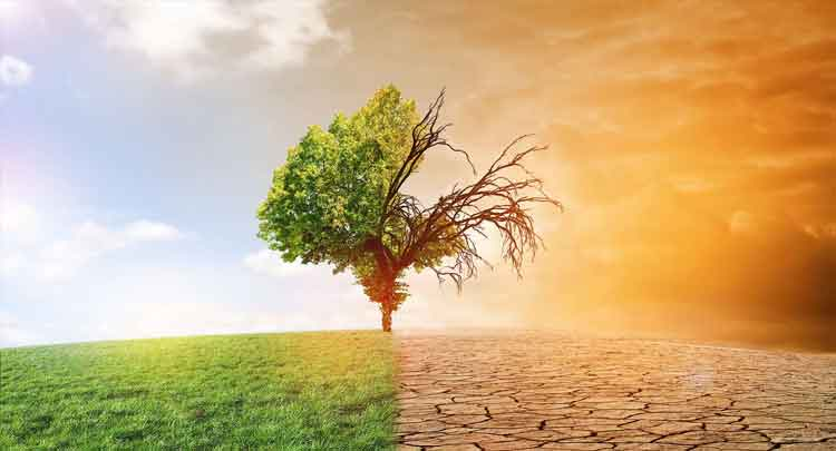 Photo of Aquecimento Global: causas, consequências – Resumo