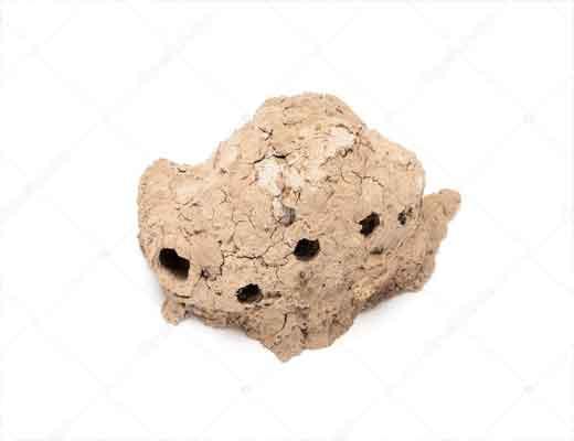 Colmeias de argila